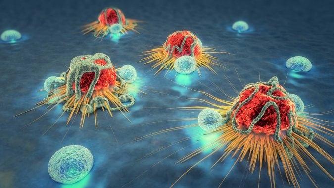 Cancer cells.