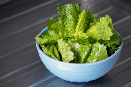 Chopped romaine lettuce in a bowl.