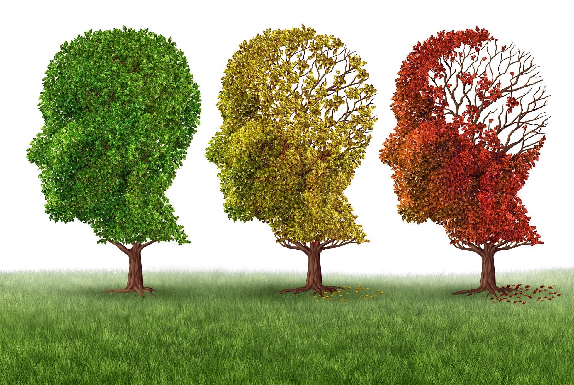 Are you losing your mind? When to worry about delayed recall and memory loss