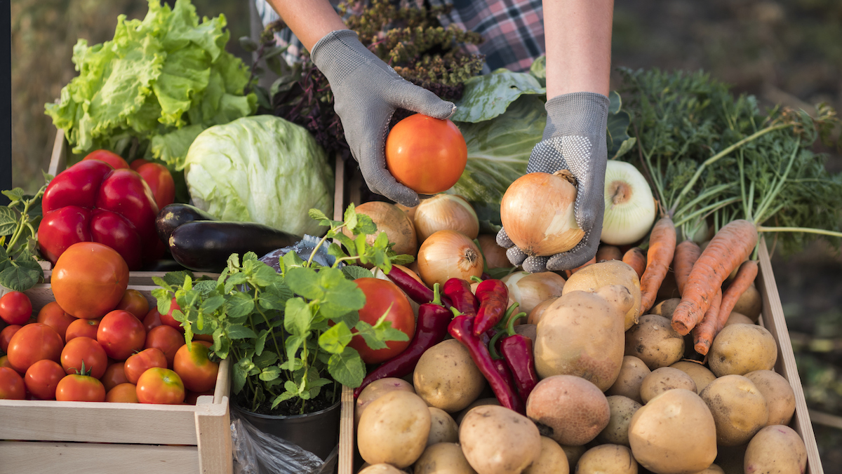 Why Local Produce Is Better for You Than Store-Bought Produce